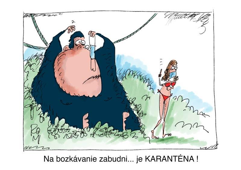 king kong cartoon