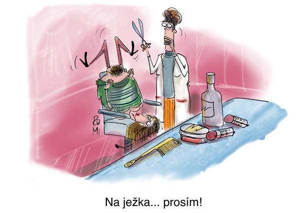 kaderník cartoon